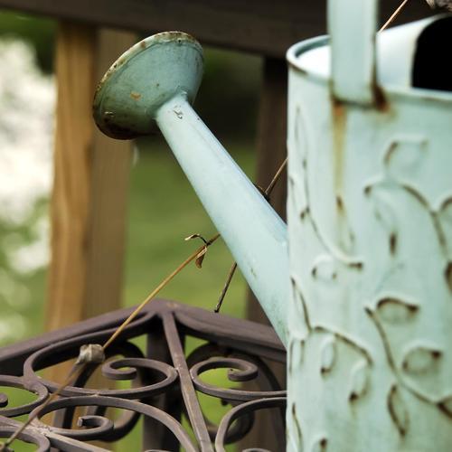 Éradiquer les taches de vert-de-gris