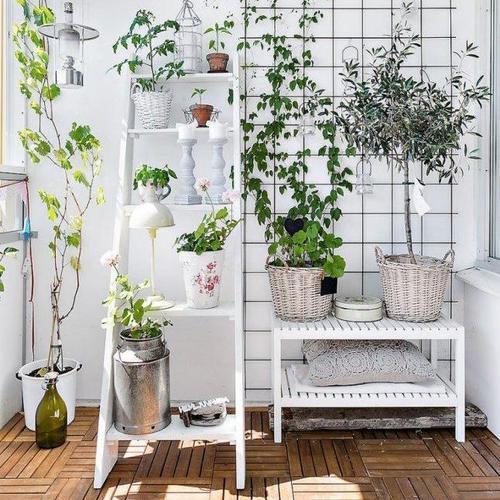 dcorer votre extrieur avec des plantes - Decorer Une Terrasse Avec Des Plantes