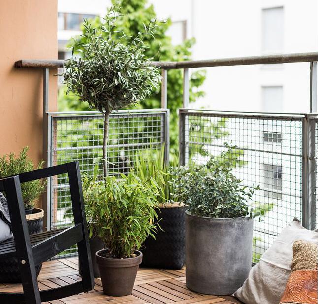 Décoration et aménagement extérieurs : 9 conseils - Ooreka
