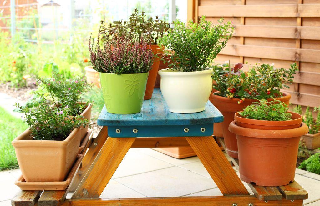 jardini re en terre cuite choix et prix ooreka. Black Bedroom Furniture Sets. Home Design Ideas
