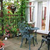 Plantes Pour Terrasse Ensoleillee Liste Ooreka