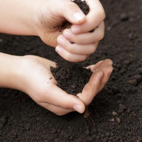 Comment préparer un lit de semence