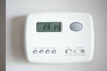 thermostat pour vivarium