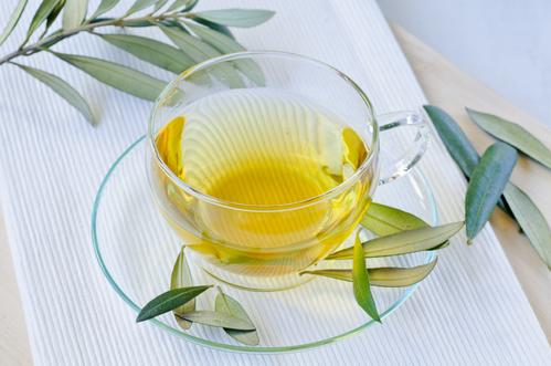 Tisane d'olivier : bienfaits de la tisane d'olivier - Ooreka