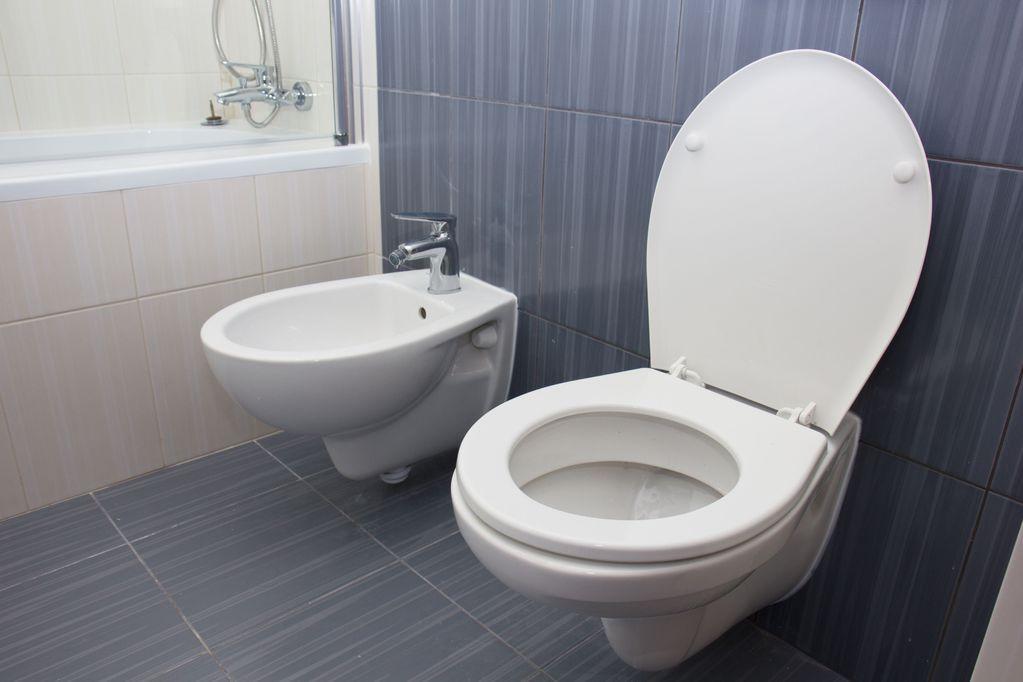 abattant wc d clipsable int r t et prix du clipsable. Black Bedroom Furniture Sets. Home Design Ideas