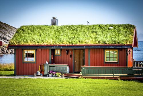 Toit v g tal installation et entretien d un toit v g tal for Toit terrasse vegetal