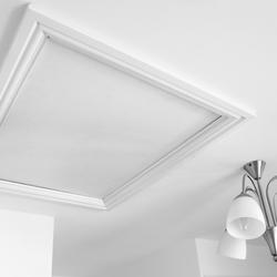 Plafond le sujet d crypt la loupe for Trappe de plafond