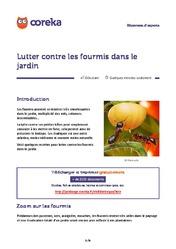 D sinsectisation le guide de la d sinsectisation - Lutter contre les mites ...