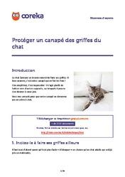 Prot Ger Un Canap Des Griffes Du Chat