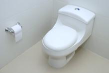 Indispensables à notre quotidien, les WC sont désormais esthétiques, économiques et performants.